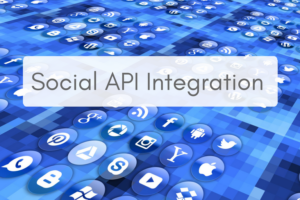 social api integration