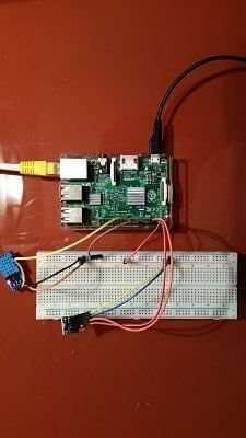 raspberry sensors