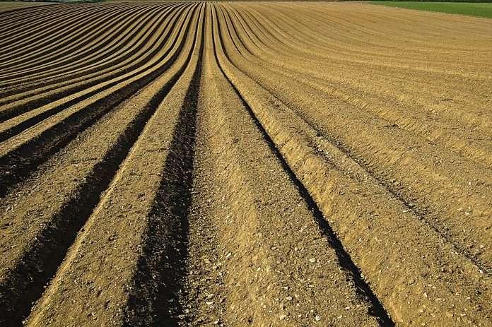 IoT soil moisture project