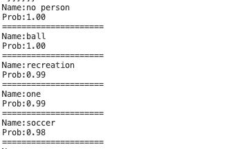 ESP32-CAM image classification